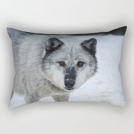 Lone wolf roams the Canadian Rockies Rectangular Pillow