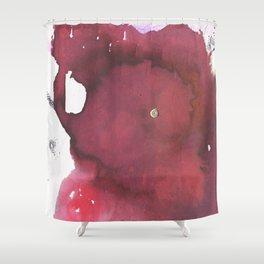 P162 Shower Curtain