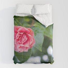 Beauty in Strength Comforters