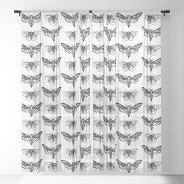 Geometric Moths Sheer Curtain