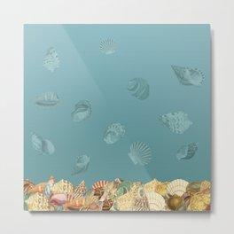 Sea shells Composition 2 Metal Print