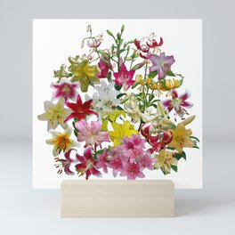 Lots of lilies to love! Mini Art Print