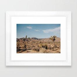 Joshua Tree, CA Framed Art Print