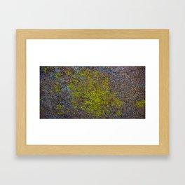 Moss Framed Art Print
