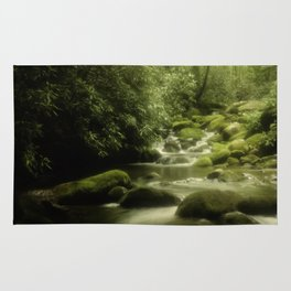 Great Smokey Mountains mossy stream Rug