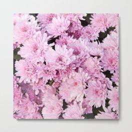 A Sea of Light Pink Chrysanthemums #1 #floral #art #Society6 Metal Print