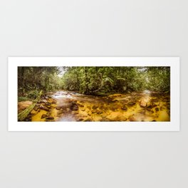 Forest Panorama Art Print