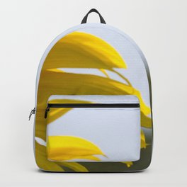 Approaching the Target Backpack
