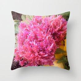 A Pink Celosia Throw Pillow