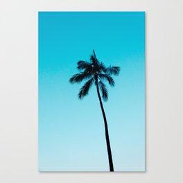 palm tree ver.skyblue Canvas Print