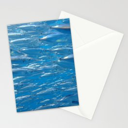 Fish shoal of common bellowsfish Stationery Cards