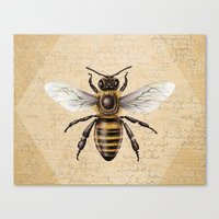 bee Canvas Prints featuring Bee by Paper Skull Studios