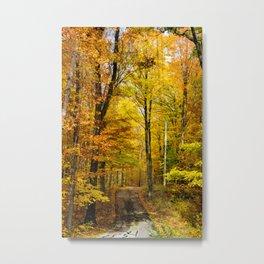 Wisconsin Fall Roadway (Nature Photography) Metal Print