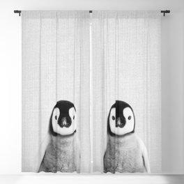 Baby Penguin - Black & White Blackout Curtain