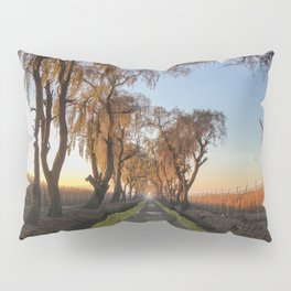 The path in the sunrise Pillow Sham