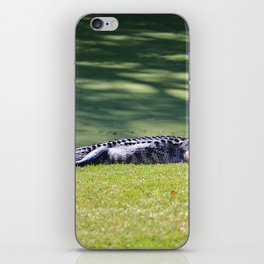 Wildlife In The South iPhone Skin
