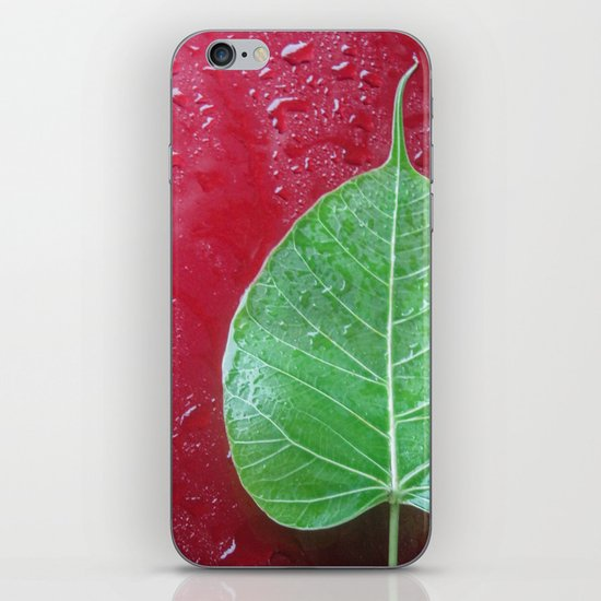 Leaf on red iPhone Skin