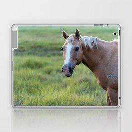 Silver III Laptop & iPad Skin
