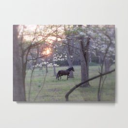 Patty in the Dogwoods Metal Print
