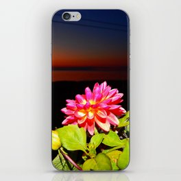 Flowers at Night iPhone Skin