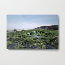 Rockpool Exploration Metal Print