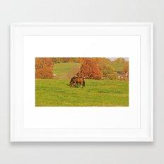 Horse Pasture Framed Art Print