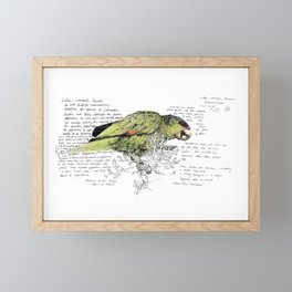 Lilac-Crowned Parrot Framed Mini Art Print