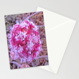 Wild love on Rodeo Beach, California Stationery Cards