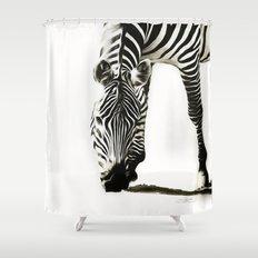 Zebra - paint Shower Curtain