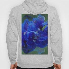 True blue delphinium Hoody