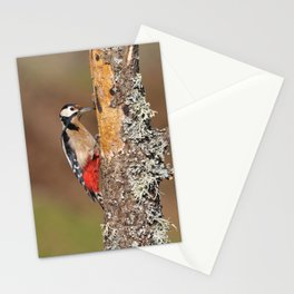 Great spotted woodpecker. Stationery Cards