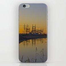Powerline Sunset iPhone & iPod Skin