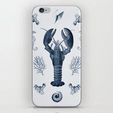vintage sea life iPhone & iPod Skin