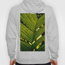 LEAF OF THE PALM Hoody