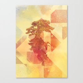 Bocuma 03 Canvas Print