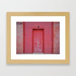 Door of Life Framed Art Print