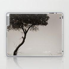 How's the Serenity? Laptop & iPad Skin