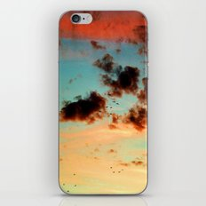 It was a beautiful day - photography  iPhone & iPod Skin