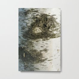 Birch Bark I Metal Print