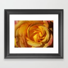Rose Orient 2032 Framed Art Print