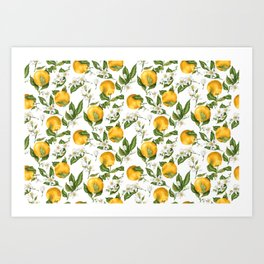 Citrus OrangeTree Branches with Flowers and Fruits Art Print