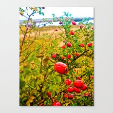 Nature red and green. Canvas Print