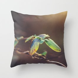 Holding On: A Winter Leaf Throw Pillow