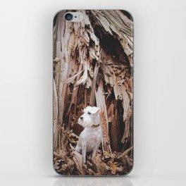 SPLIT TREE WITH DOG iPhone Skin