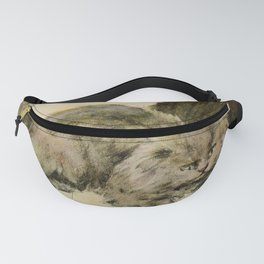 Fluffy Cats Resting Outside Fanny Pack
