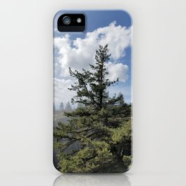 Gnarled Tree Against Blue Sky and Clouds, Beautiful Landscape of Old Tree iPhone Case