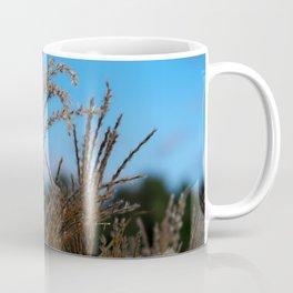 Chinese Silver Grass and Blue Sky Coffee Mug