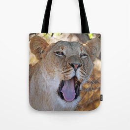 Tired lion - Africa wildlife Tote Bag