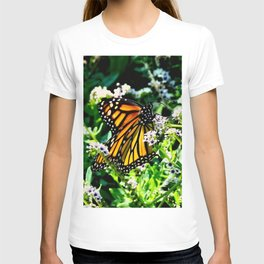 Monarch on Fiddlehead Blossoms T-shirt