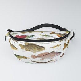 Illustrated Northeast Game Fish Identification Chart Fanny Pack